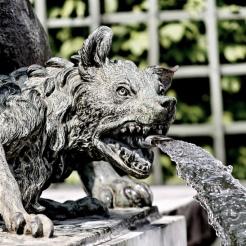 Lion terrassant un loup