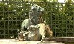 Versailles_Fontaine_Soir_Raon_Lion_Sanglier