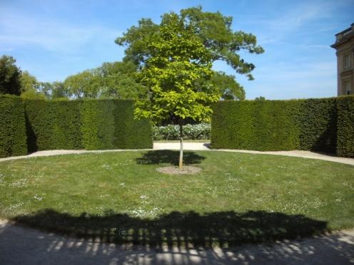 Jeu de bague jardin anglais du petit trianon tulipier for Jardin anglais du petit trianon