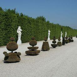 Topiaires, jardins de Versailles
