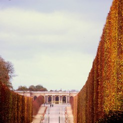 Avenue de Trianon