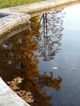 Bassin du Trianon