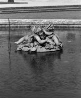 Deux amours s'ébattant autour d'une touffe de roseaux