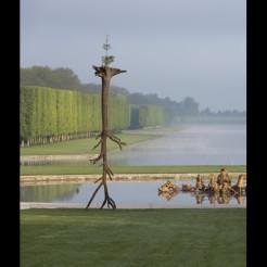 2013 - Giuseppe Penone - Les feuilles des racines