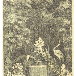 13. Fontaine du Renard et de la Grue